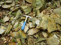Chlorit-sericitické fylity pod výchozy u vstupu do lomu., Pavla Gürtlerová, 2010