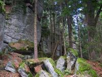 Skalní hradba na Kamenci, Jiří Rypl, 2004