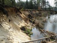 Odtrhy v nárazovém břehu řeky Lužnice odkrývají zajímavé profily pleistocenními a místy i křídovými sedimenty., Miroslav Hátle, 2010