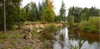 Odtrhy v nárazovém břehu řeky Lužnice odkrývají zajímavé profily pleistocenními a místy i křídovými sedimenty., Pavla Gürtlerová, 2010