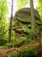 Výchozy granitů typu Homolka v okolí kóty Fabián (610 m n. m)., Pavla Gürtlerová, 2010