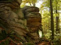 Výchozy granitů typu Homolka v okolí kóty Fabián (610 m n. m)., Miroslav Hátle, 2007