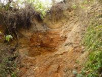 Silně písčitý hrubozrnný fluviální štěrk s nevýrazným šikmým korytovitým zvrstvením. V horní části profilu přechází do hrubozrnného písku, tvořícího vzájemně se seřezávající duny se šikmým zvrstvením. Zcela v horní části profilu je dvoumetrová poloha jemnozrnného masivního písku., Pavla Gürtlerová, 2009