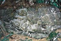 Tektonický kontakt svorů stroňské skupiny a amfibolitů novoměstské skupiny., Mojmír Opletal, 2007