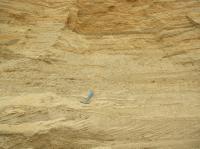 Planární šikmé a korytovité šikmé zvrstvení ve fluviálních kvartérních píscích. , Pavla Tomanová Petrová, 2011