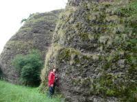 Pohled na skály tvořené rokytenskými slepenci při silinici Alexovice–Řeznovice. , Helena Gilíková, 2011