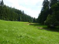Údolní niva v údolí potoka Čenkovička v blízkosti skalních výchozů ortorul., Pavla Gürtlerová, 2011