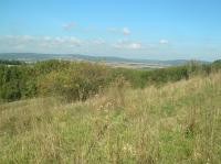 Pohled z lokality do karpatské předhlubně a na Drahanskou vrchovinu., Pavla Tomanová Petrová, 2011