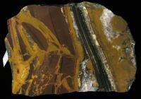 Mineralogické výskyty achátu a jaspisu a dalších variet křemene z rozpukané zóny bazaltandezitu v lomu Doubravici., Radko Šarič, 2011