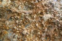 Skalní výchoz v lukovských vrstvách - detail slepencové polohy v rámci turbiditních sedimentů., Roman Novotný, 2011