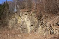 Stěna opuštěného lomu u Petrovic - jemnozrnné vápnité pískovce až prachovce obsahující charakteristické konkrece vápenců bochníkovitého tvaru., Pavla Gürtlerová, 2012