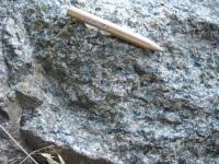 Amfibol biotitické granodiority v opuštěném lomu na konci Mlýnského nábřeží v Obřanech. , Pavel Hanžl, 2010