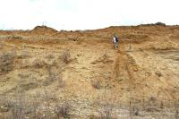 Profil ve steně štěrkovny, svrchní partie 1,5 mocný patrně deluvioeolický písek, v němž hnízdí vlhy a břehule., Oldřich Holásek, 2012