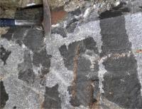 Enklávy dioritů v biotitickém granitu, příklad míšení magmat., David Buriánek, 2010