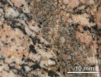 Mafická enkláva v amfibol-biotitickém granodioritu., Irena Sedláčková, 2010