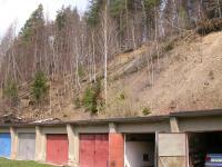 Opuštěný lom v pískovcovo-slepencovém pásmu istebňanského souvrství., Miroslav Bubík, 2005