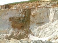 Argilizovaná žíla bazanitu s apofýzami. Na endokontaktu jsou železité inkrustace. Severní část lomu Střeleč., Stanislav Čech, 2010
