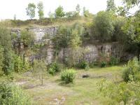 Pohled na východní stěnu lomu u Miskovic s iniciálními krasovými dutinami vyvinutými v biodetritických vápencích., Veronika Štědrá, 2006