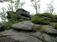 Jelení stráň tvořená hrubě až středně zrnitým porfyrickým biotitickým granitem., Štěpánka Mrázová, 2009