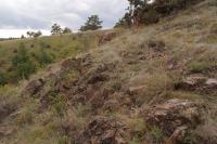 Příkré svahy nad údolím Jihlavy pokryté teplomilnou vegetací vázanou na serpentinitové horninové podloží., Pavla Gürtlerová, 2012