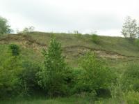 Písky bzeneckého souvrství (zóna C-D)., Pavla Tomanová Petrová, 2009