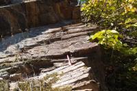 Skalní odkryv na jižním okraji údolí při silnici- bývalý lom. Páskované kvarcity., Pavla Gürtlerová, 2012
