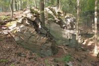 Skalky a výchozy bítešských ortorul na sz. svazích Hrušína (kota 574 m), Pavla Gürtlerová, 2012