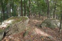 Skalnatý hřeben na hřbetu kóty 628 m - Hrádky Bítešské ruly., Pavla Gürtlerová, 2012