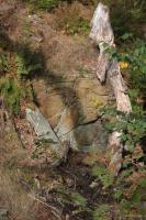 Ležatá vrása v bítešské ortorule na výchoze v okolí kóty (600m), Pavla Gürtlerová, 2012