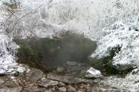 Ventaroly v trachytových sutích na svahu Borečského vrchu, Motyčková Kamila - Šír Jiří, 2003