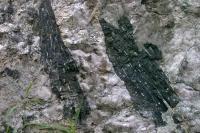 Černý turmalín - skoryl v pegmatitové žíle, Motyčková Kamila - Šír Jiří, 2005