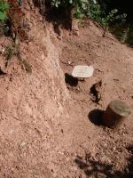 Výchozy permských sedimentů u rybníka dolní Peklo, Anon, 2011