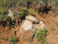 Bloky porfyrického granitu ve zjílovatělých tufech, stržené sesuvem v údolí Lučinského potoka, Bedřich Mlčoch, 2012