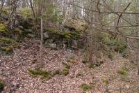 Skalní výchozy v zářezu cesty v údolí potoka jv. od Čížova. Ruly dyjské klenby moravika., Pavla Gürtlerová, 2014
