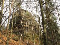 Panenský kámen na jižním úbočí vrchu je tvořen prokřemenělým pískovcem, na některých místech mřížovitě prostoupeným železitými a křemennými žilkami., Markéta Vajskebrová, 2015