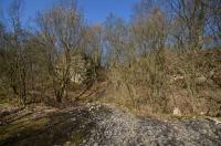 Starý lom odkrývá sled od svrchní části lochkovského souvrství do nižší části pražského souvrství., Motyčková Kamila - Šír Jiří, 2015