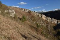 Opěrné stratigrafické profily a  významné paleontologické lokality., Motyčková Kamila - Šír Jiří, 2015