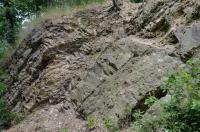 Téměř souvislý sled hornin od proterozoika (štěchovická skupina) po letenské souvrství (beroun, ordovik)., Motyčková Kamila - Šír Jiří, 2012