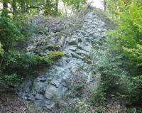 Výchoz vrstevnatého neoproterozoického silicitu (buližníku) v lomu sv. od Žloukovic (polesí Mařtálka)., Tomáš Vorel, 1999
