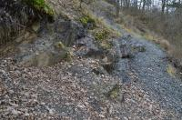 Významné naleziště zkamenělin, zejména trilobitů, přírodní památka., Motyčková Kamila - Šír Jiří, 2015