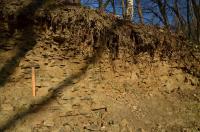 Stanoviště naučné geologické stezky  - Hostim. Výchoz břidlic a prachovců srbského souvrství s hojnými zbytky suchozemských rostlin., Motyčková Kamila - Šír Jiří, 2015