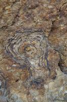 Na povrchu puklin jsou často vysrážené železité povlaky zajímavých tvarů.   , Markéta Vajskebrová, 2016