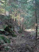 Ochranný protihlukový val libkovského lomu., Fotoarchiv Národního geoparku Železné hory, 2011