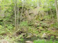 Lom zarůstá přirozeně náletovými dřevinami a křovinami., Fotoarchiv Národního geoparku Železné hory, 2010