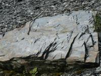 Chloriticko-sericitické fylity jsou částečně zbřidličnatělé s polohami tzv. pokrývačských břidlic., Lukáš Laibl, 2007