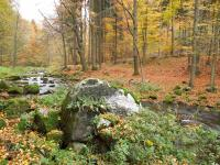 Přírodní rezervace Krkanka v údolí řeky Chrudimky., Fotoarchiv Národního geoparku Železné hory, 2010