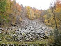 Na kamenná moře v údolí jsou vázány specifické druhy rostlin a živočichů., Fotoarchiv Národního geoparku Železné hory, 2010