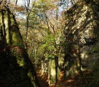 Povrchová rozsedlina v blízkosti skalní vyhlídky nad Stárkovem je 115 m dlouhá, 2-15 m široká a až 11 m hluboká., Jan Vítek, 2008