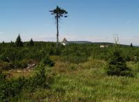 Jedno z menších vrchovištních rašelinišť na zarovnaném povrchu (etchplén) na plochém vrcholovém hřbetu Orlických hor (přibližně v 1035 m n. m.)., Jan Vítek, 2011