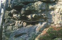 Skalní defilé (mrazový srub) stromatitického  sillimant-cordierit-biotitického migmatitu s budinami kvarcitů a erlanů (bílá přerušovaná čára), Jaroslava Pertoldová, 2015